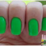 Verde – Big Universo