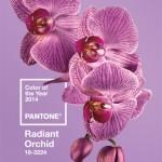 A cor de 2014: Radiant Orchid