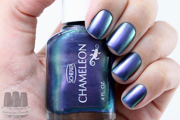 CHAMELEON-bluesky